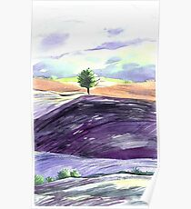Watercolor landscape Tuscan. Poster