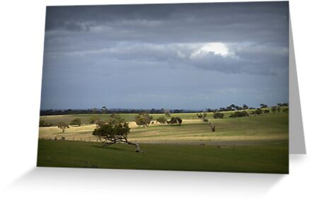 Paddock North of Callington by Ben Loveday