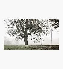 Westbridge Goalposts Photographic Print