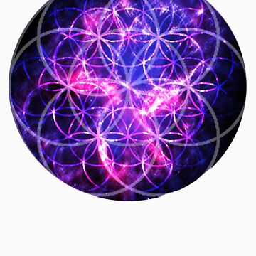 Glactic Flower of Life by Nate4D7