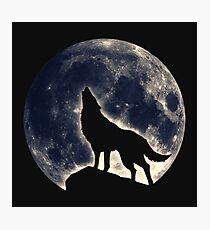 Wolf, moon, fantasy, wild, dog, wolves, sky, night Photographic Print