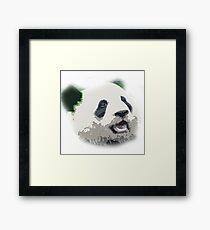 Green Eared Panda Monster Framed Print