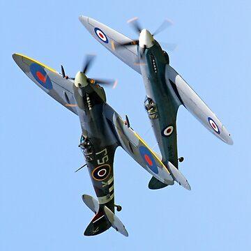 Spitfire/Seafire by criso