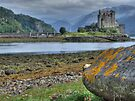 Eilean Donan Castle  198, the Highlands, Scotland by David Rankin