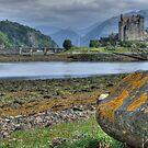 Eilean Donan Castle  198, the Highlands, Scotland by David Rankin