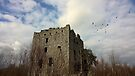 Almond Castle 33, near Whitecross, West Lothian by David Rankin