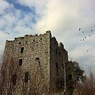 Almond Castle 33, near Whitecross, West Lothian by David Rankin