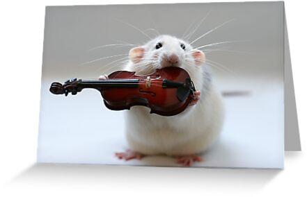 My new violin. by Ellen van Deelen