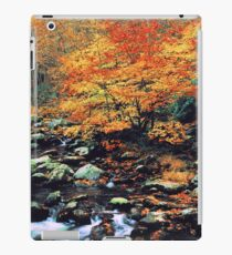 BEECHES ALONG MIDDLE PRONG iPad Case/Skin