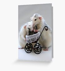 Babysitting the cat. Greeting Card