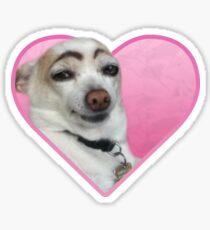 Doggo-Aufkleber: Augenbraue Doggo Sticker