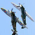 Spitfire/Seafire by Chris Ayre