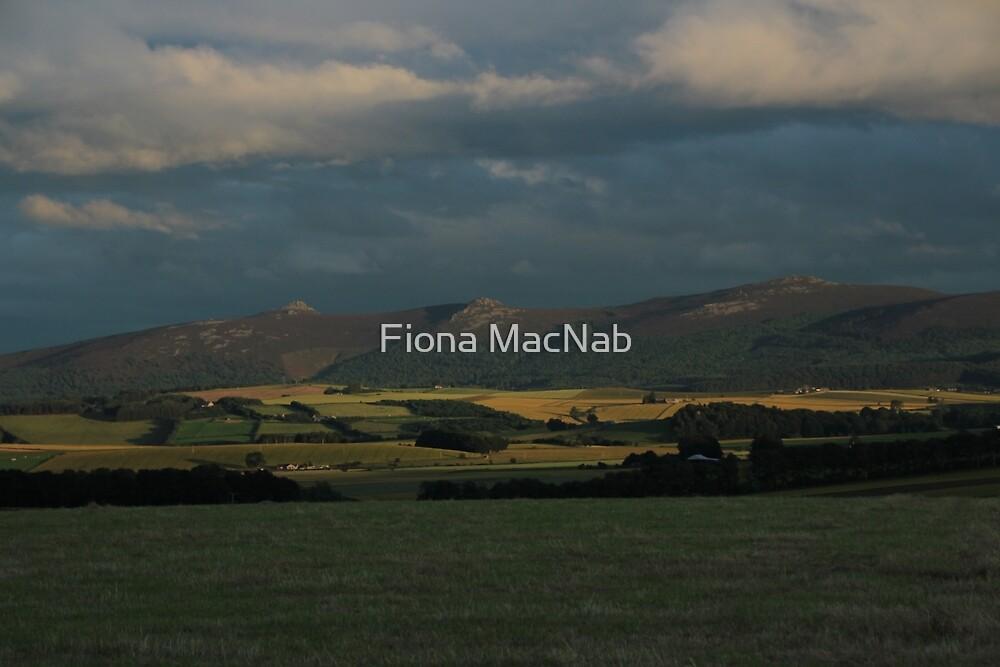 Bennachie view by Fiona MacNab