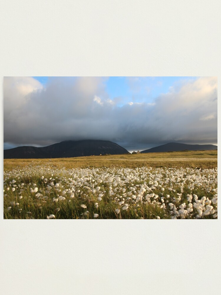 Alternate view of Hoy Hills from Graemsay Photographic Print