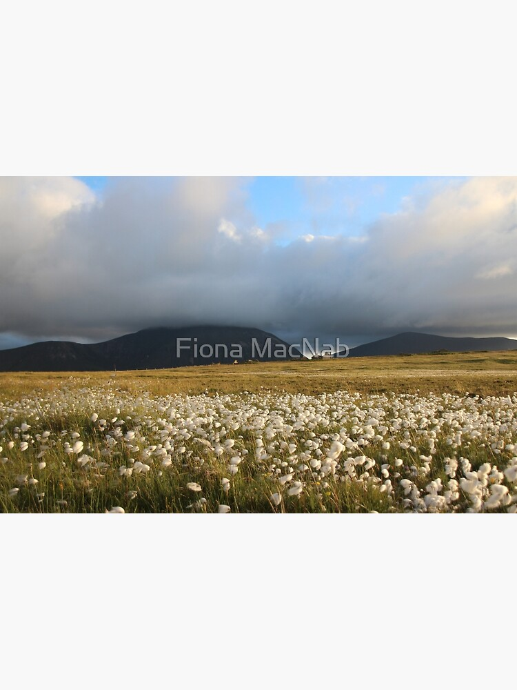 Hoy Hills from Graemsay by orcadia