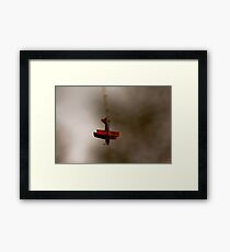 Pitts Special Framed Print