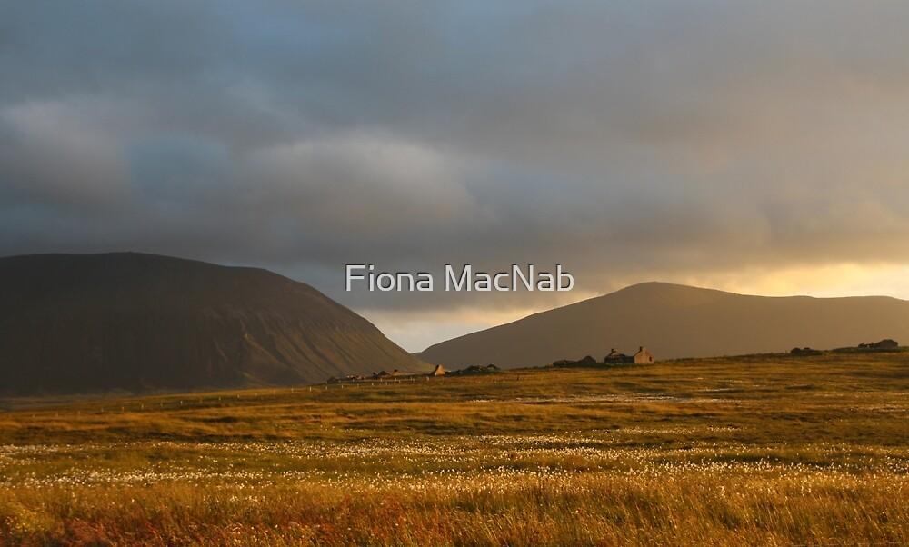 Evening light on Hoy and Graemsay by Fiona MacNab