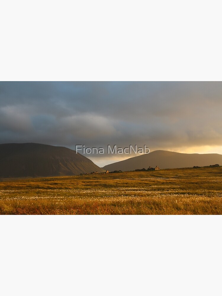 Evening light on Hoy and Graemsay by orcadia
