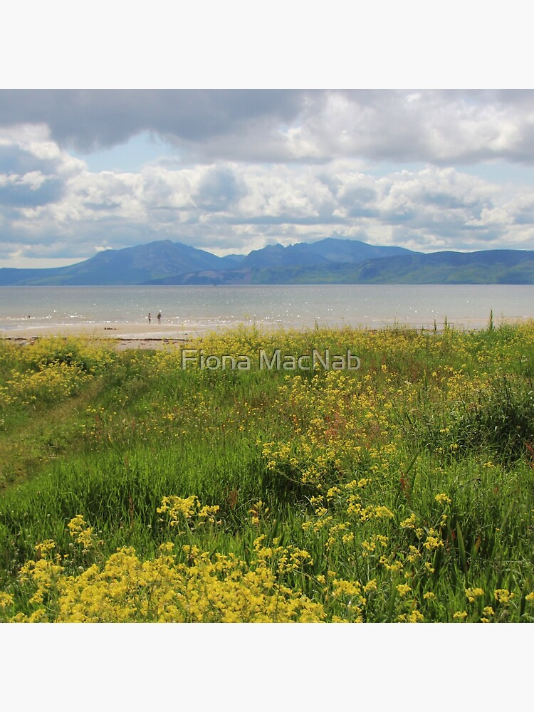 Arran from Scalpsie Bay, Bute by orcadia