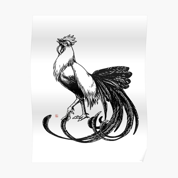 Longtail Rooster  Poster