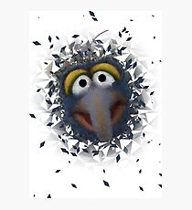 Gonzo Photographic Print