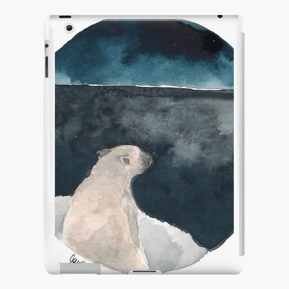 polar iPad-Hüllen & Klebefolien