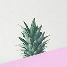 Pineapple Dip by Cassia Beck
