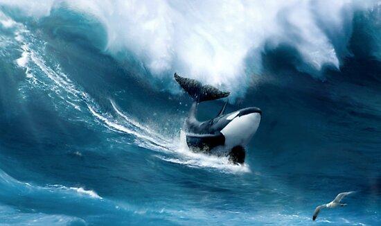 Killer Surf by Cliff Vestergaard