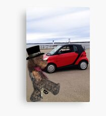 SMART BEARS DRIVE SMART CARS Canvas Print