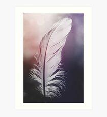 Feather in Pastel Tones Art Print