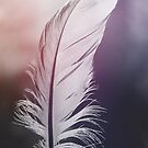 Feather in Pastel Tones by Bethany Helzer