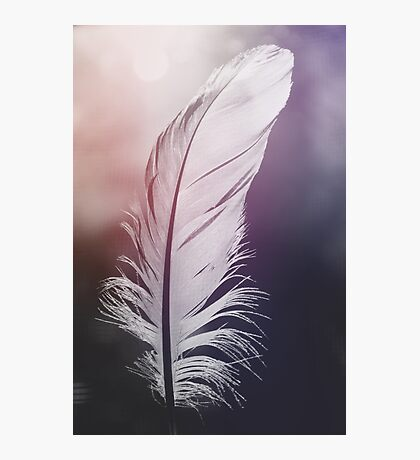 Feather in Pastel Tones Photographic Print