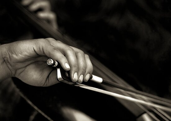 The cellist by JudyBJ