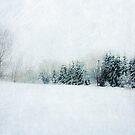 Walking in fields of snow by Angela King-Jones