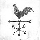 Weather Vane by mikekoubou