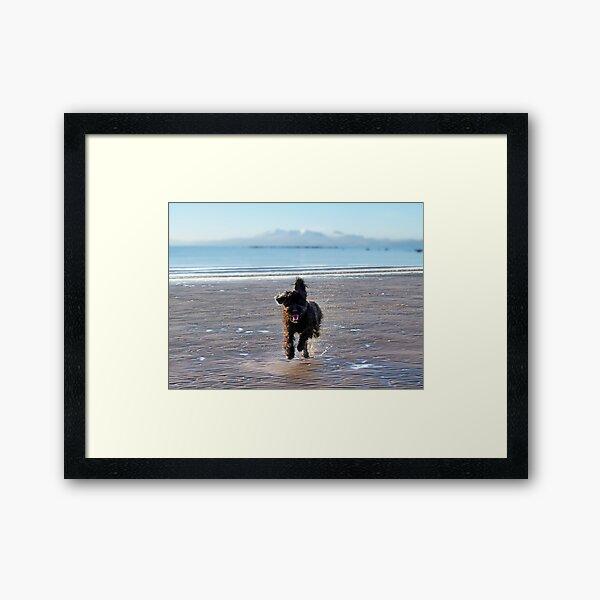Quincey Framed Art Print