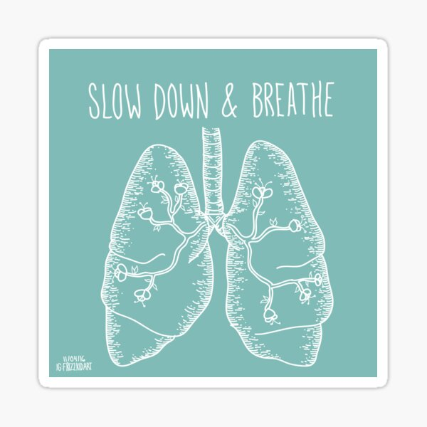Slow Down & Breathe Sticker
