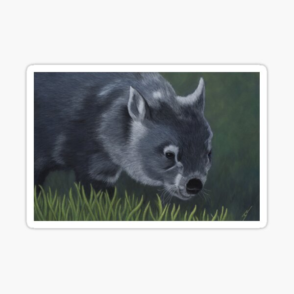 Sooty the Common Wombat Sticker
