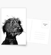 Hund Postkarten