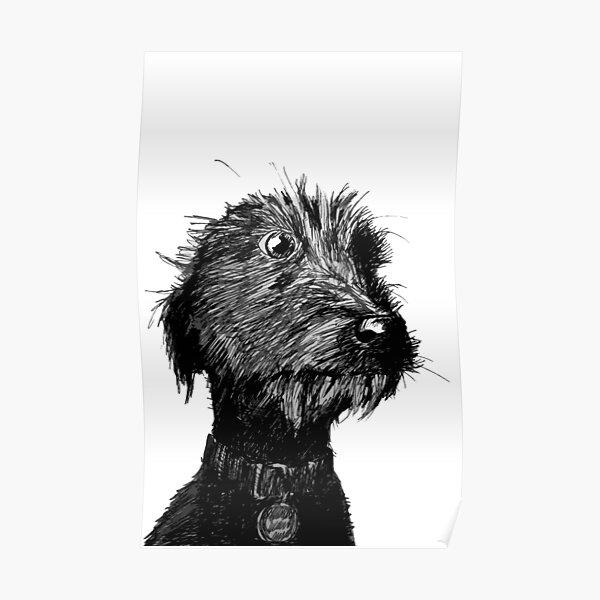 Dog Poster