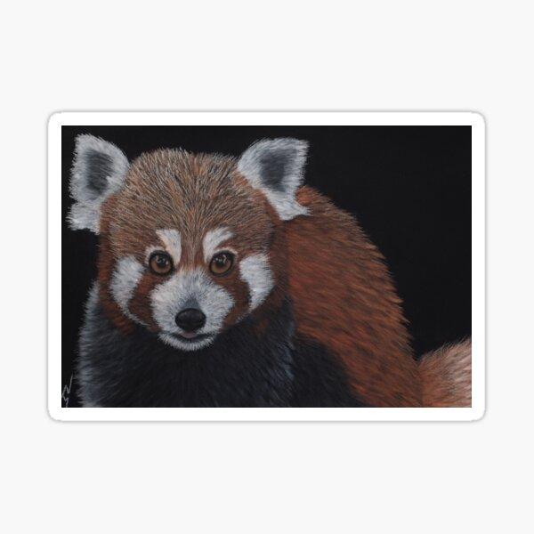 Pete: The Red Panda Sticker