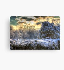 Snowy Ravine  Canvas Print