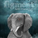 Figment by Julie Hartman