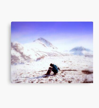 Camping at Matanuska Glacier Canvas Print