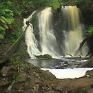 Hogarth Falls , Strahan , Tasmania by phillip wise