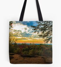 Virginia Kendall Overlook Tote Bag