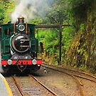 Abt locomotive on Wilderness Railway , Queenstown , Tasmania by phillip wise