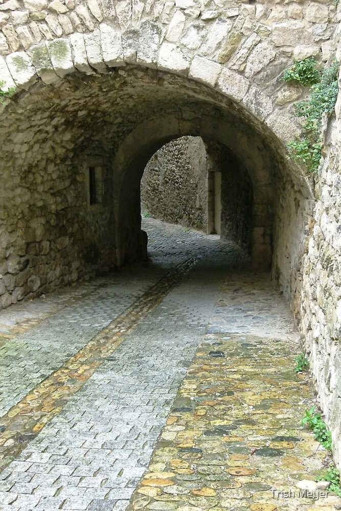 Ancient walls and alleys. by Trish Meyer