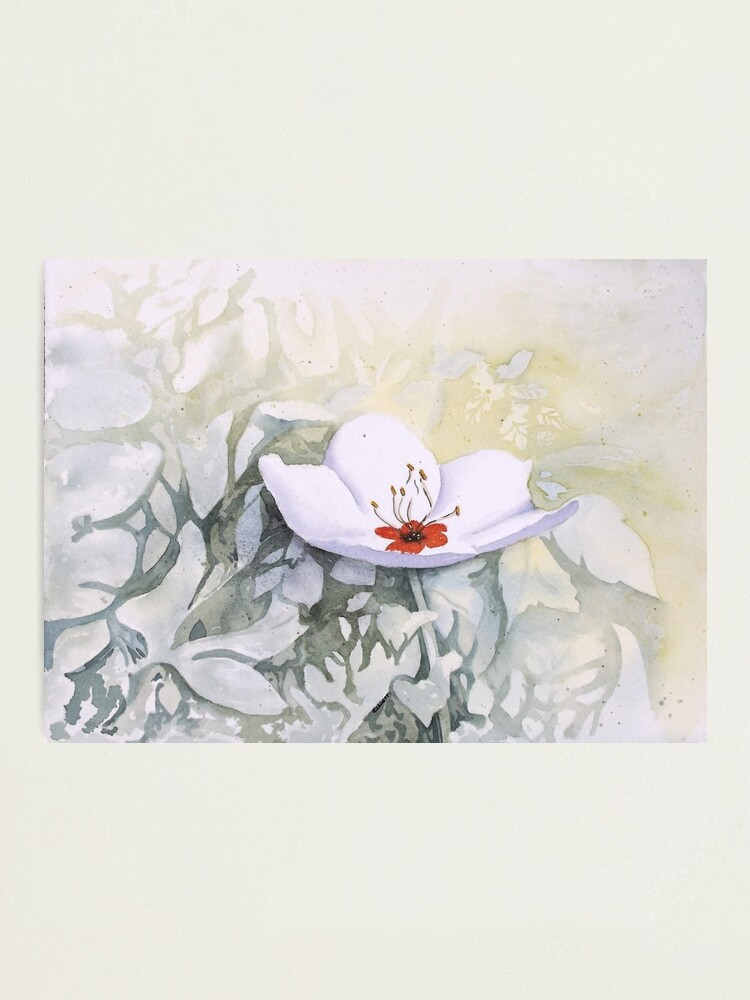 Alternate view of Blossoming at Sean's Photographic Print