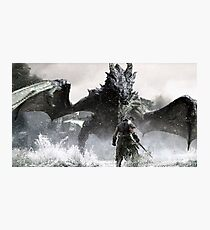 Skyrim Items Photographic Print